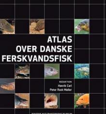Hvad ved du om fisk? Quiz - Vind bog