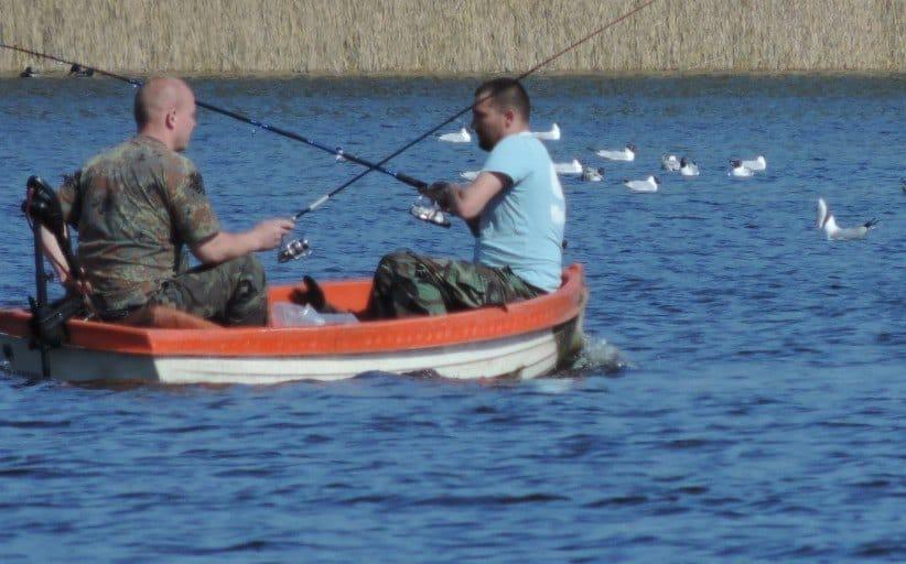 Der er et akut behov for meget mere fiskerikontrol