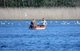 Invasion af polske madfiskere truer danske vande