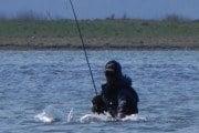 Havørred fangst ved Hassel Ø