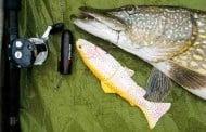 Lækker spiseseddel fra Fisk & Fri
